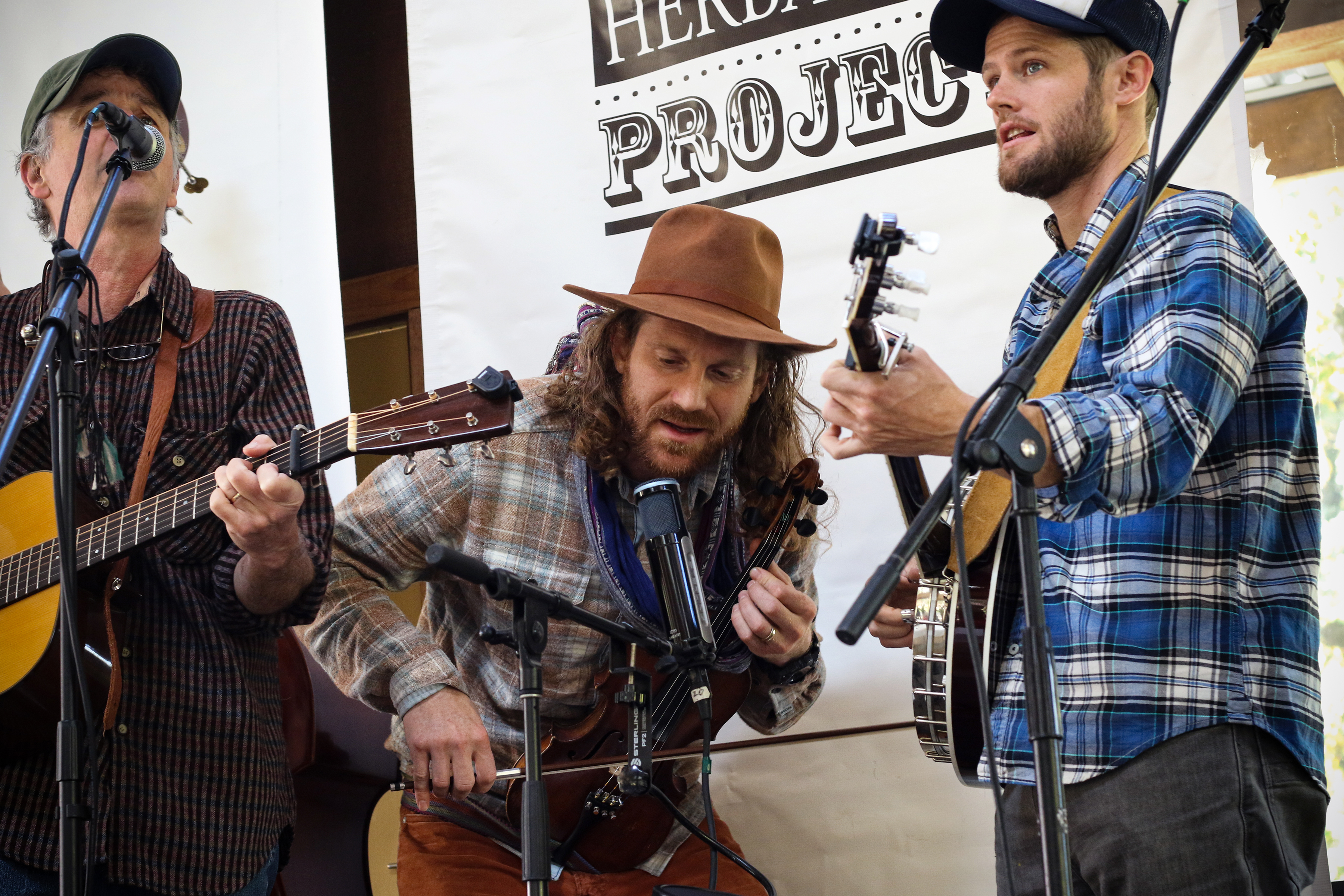 Bluegrass musicians perform during Mountain Rose Herb's Free Herbalism Project in October of 2019.