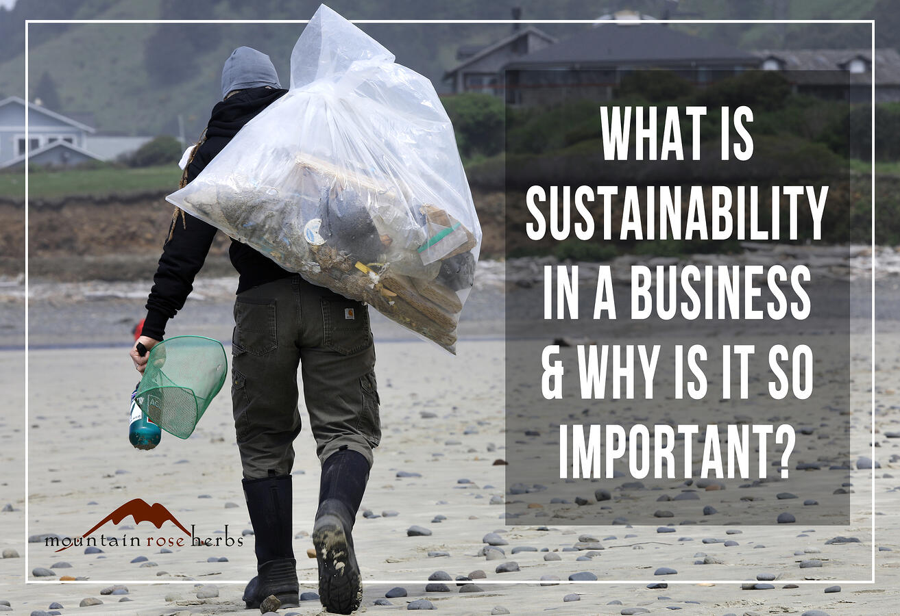 What is Sustainability in Business Pinterest pin for Mountain Rose Herbs