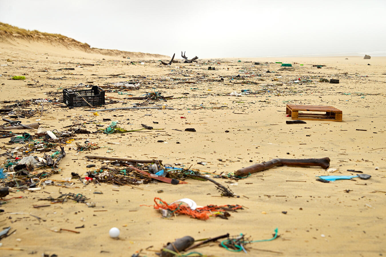 Beach Trash showing the effects of throw-away culture on the enf