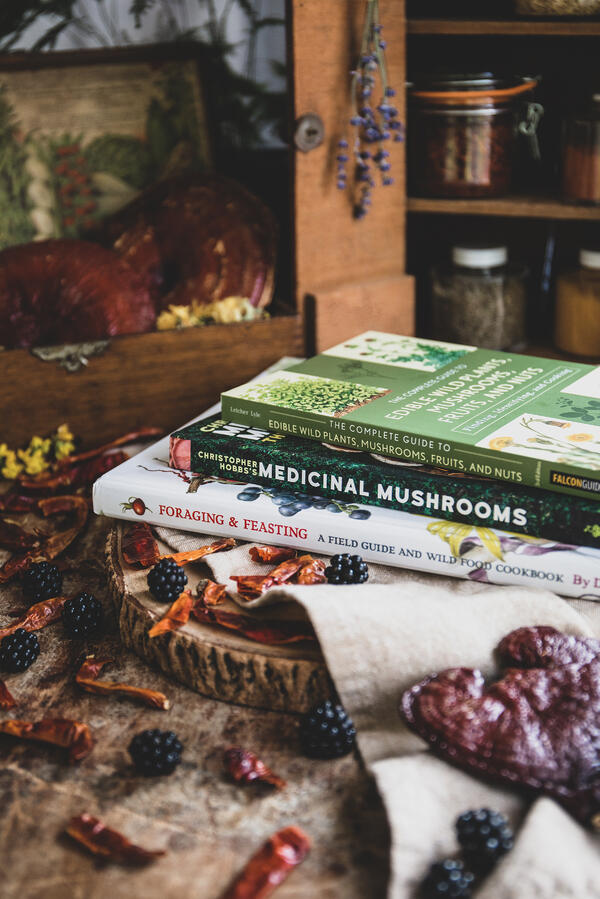 Best books on foraging for plants