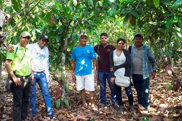 Cacao Farmers Stand For Photo in Peru Near Cacao Trees