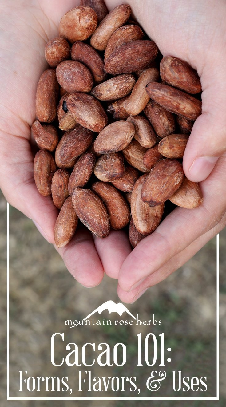 Cacao 101: Forms, Flavors, & Uses Pin by Mountain Rose Herbs