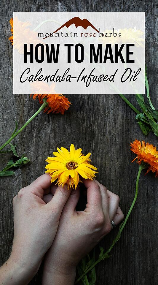 How To Make Calendula-Infused Oil Pinterest Pin from Mountain Rose Herbs