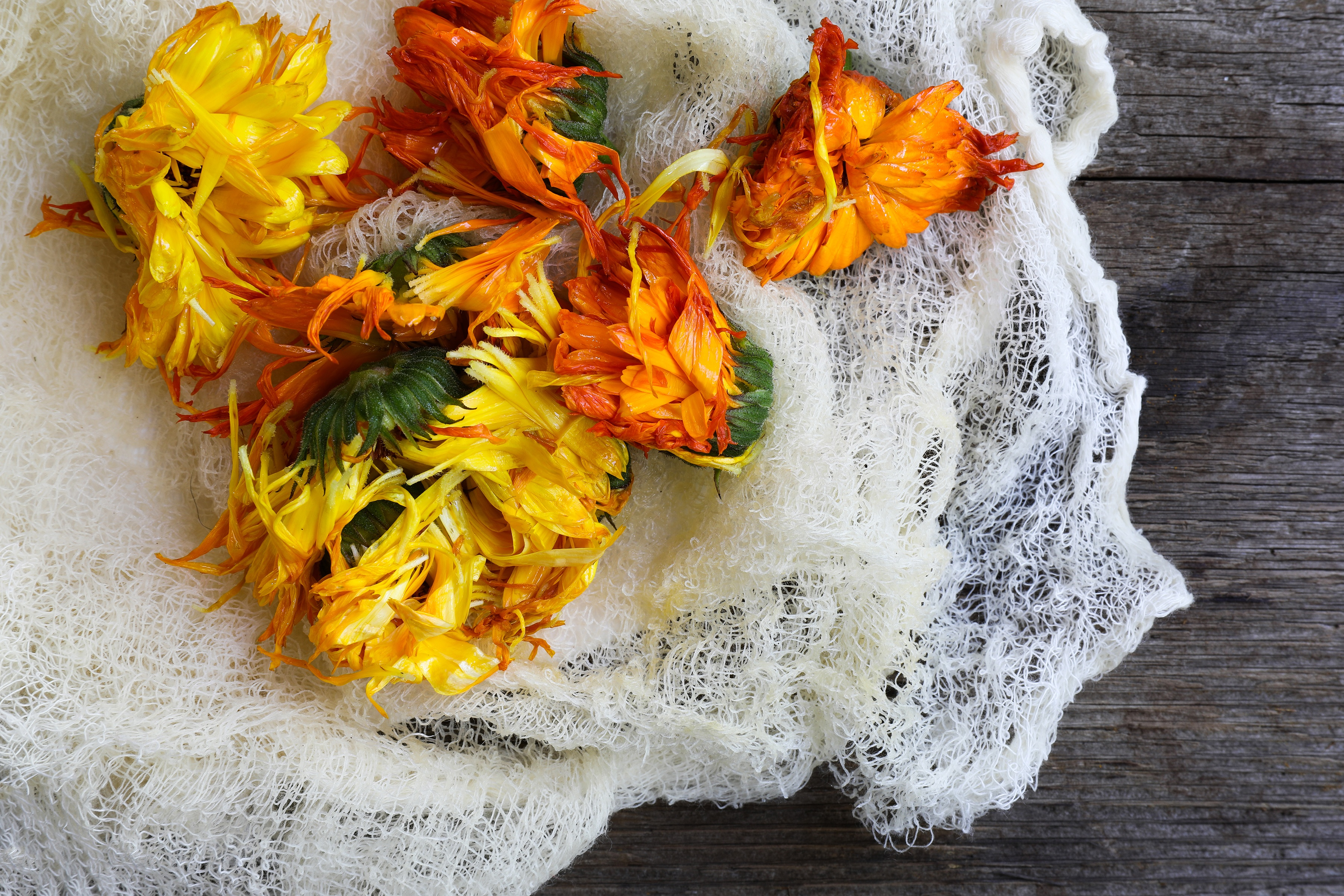 Calendula flowers laying on cheese cloth on worn wooden table