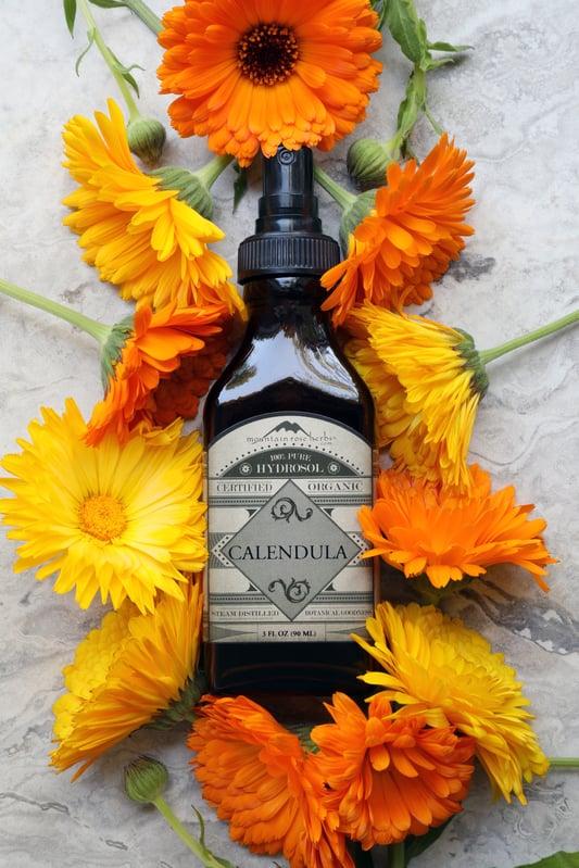 Bottle of organic calendula hydrosol surrounded by fresh colorful calendula flowers on marble slab