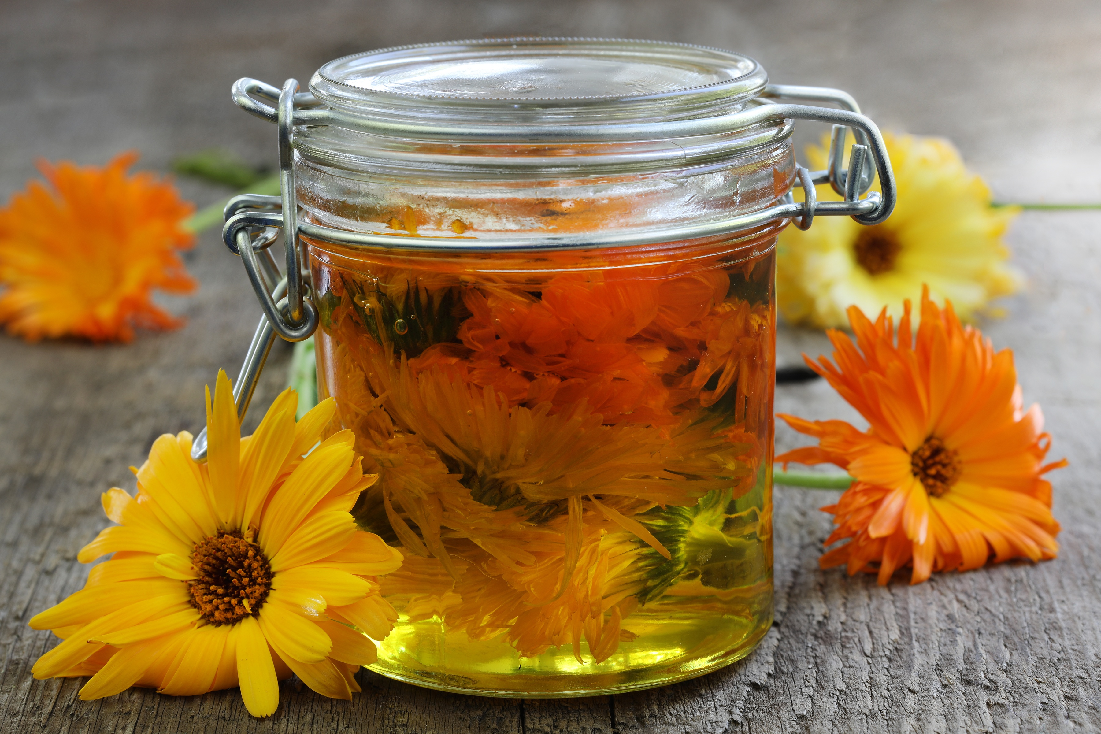 Calendula flowers in jar infused in oil sitting next to flowers