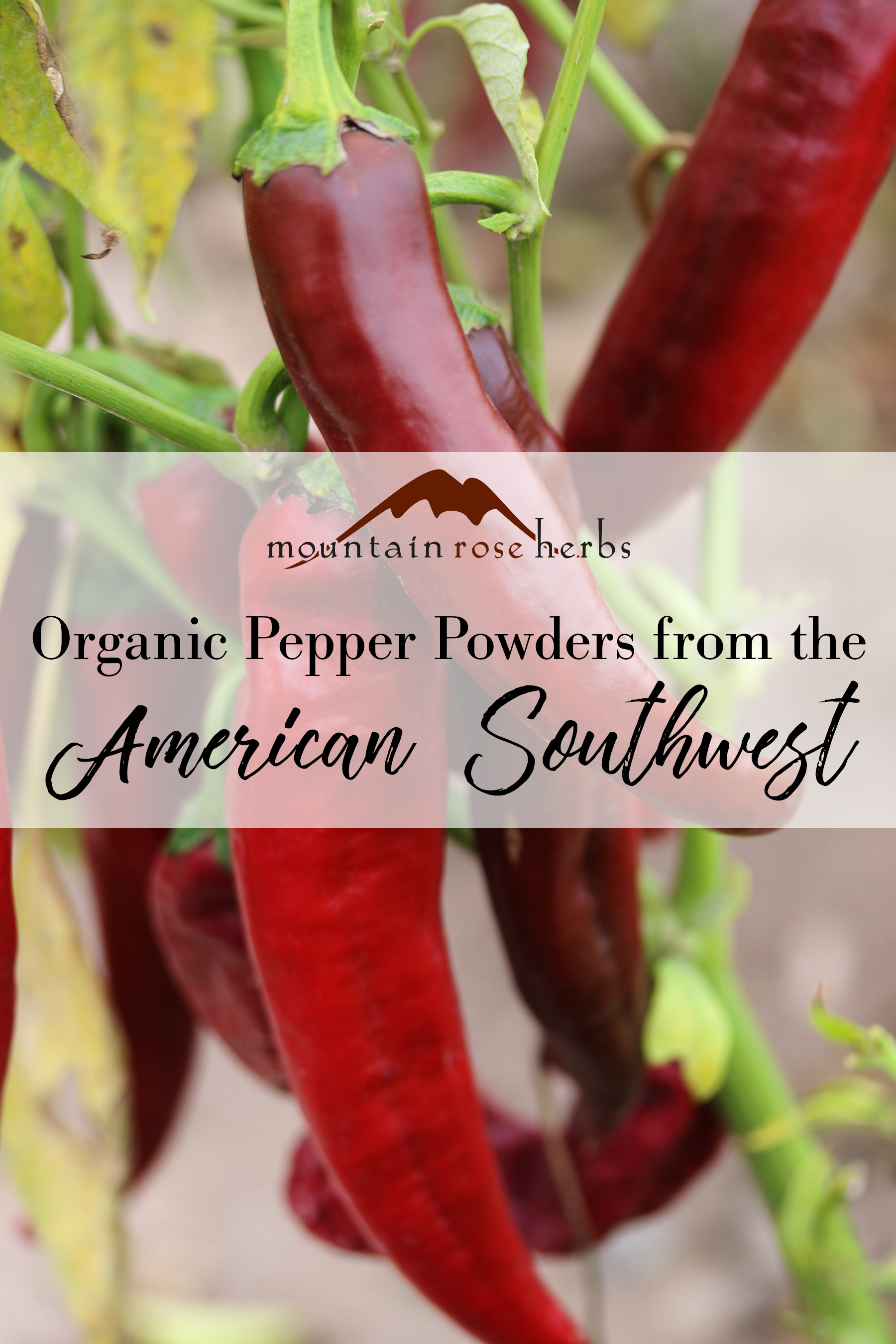Pin to Organic Pepper Powders from the American Southwest
