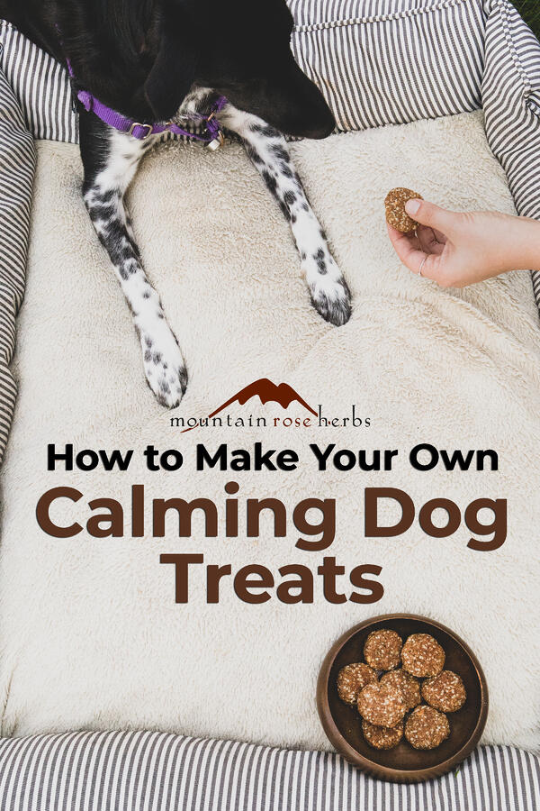 How to Make Your Own Calming Dog Treats