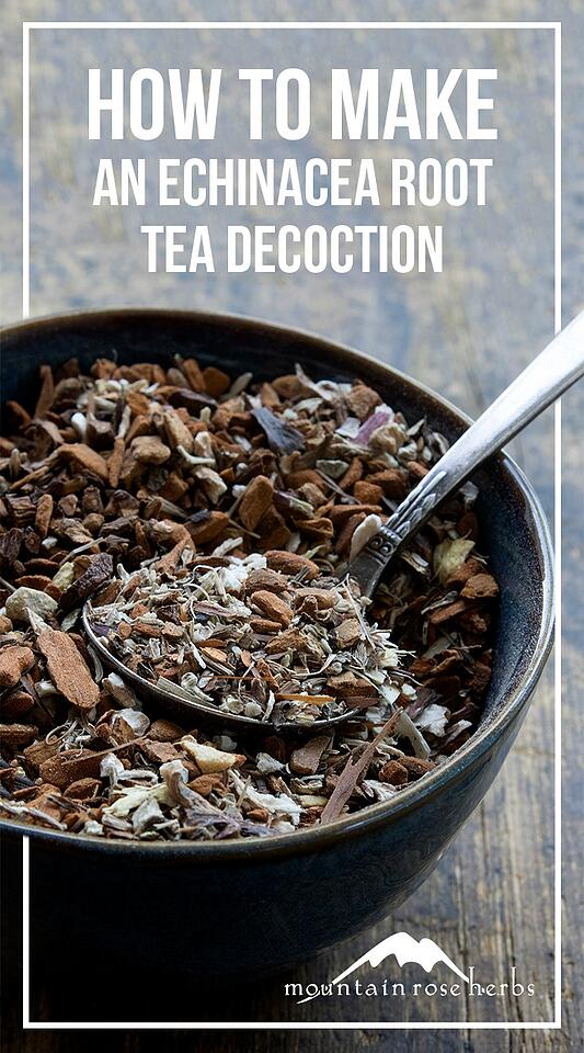 Echinacea Root Tea Decoction Blend Recipe Pin