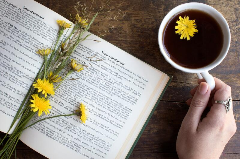 Hand holding echinacea and roots tea blend while reading a book about teas with book open and fresh dandelion flowers
