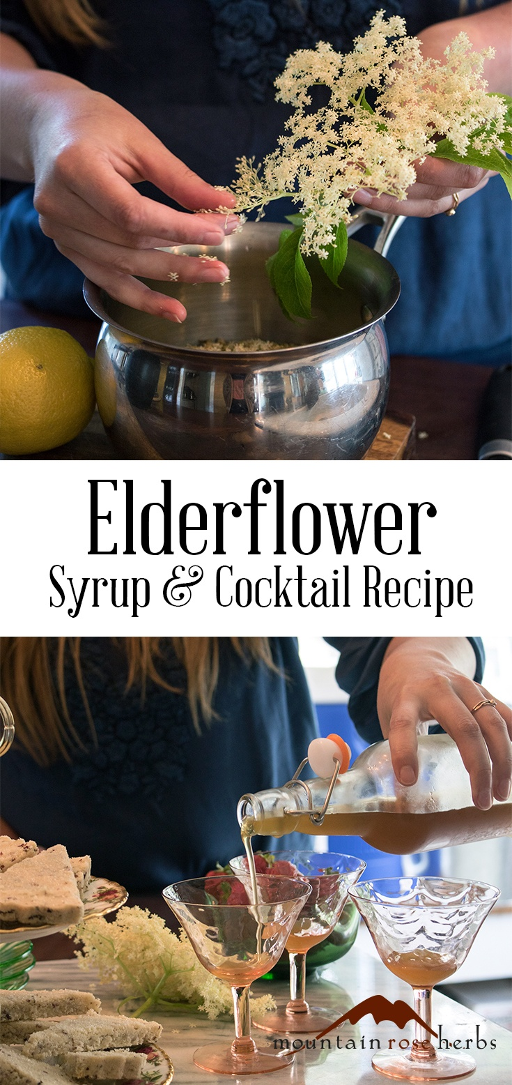 Elderflower Syrup and Cocktail Recipe from Mountain Rose Herbs
