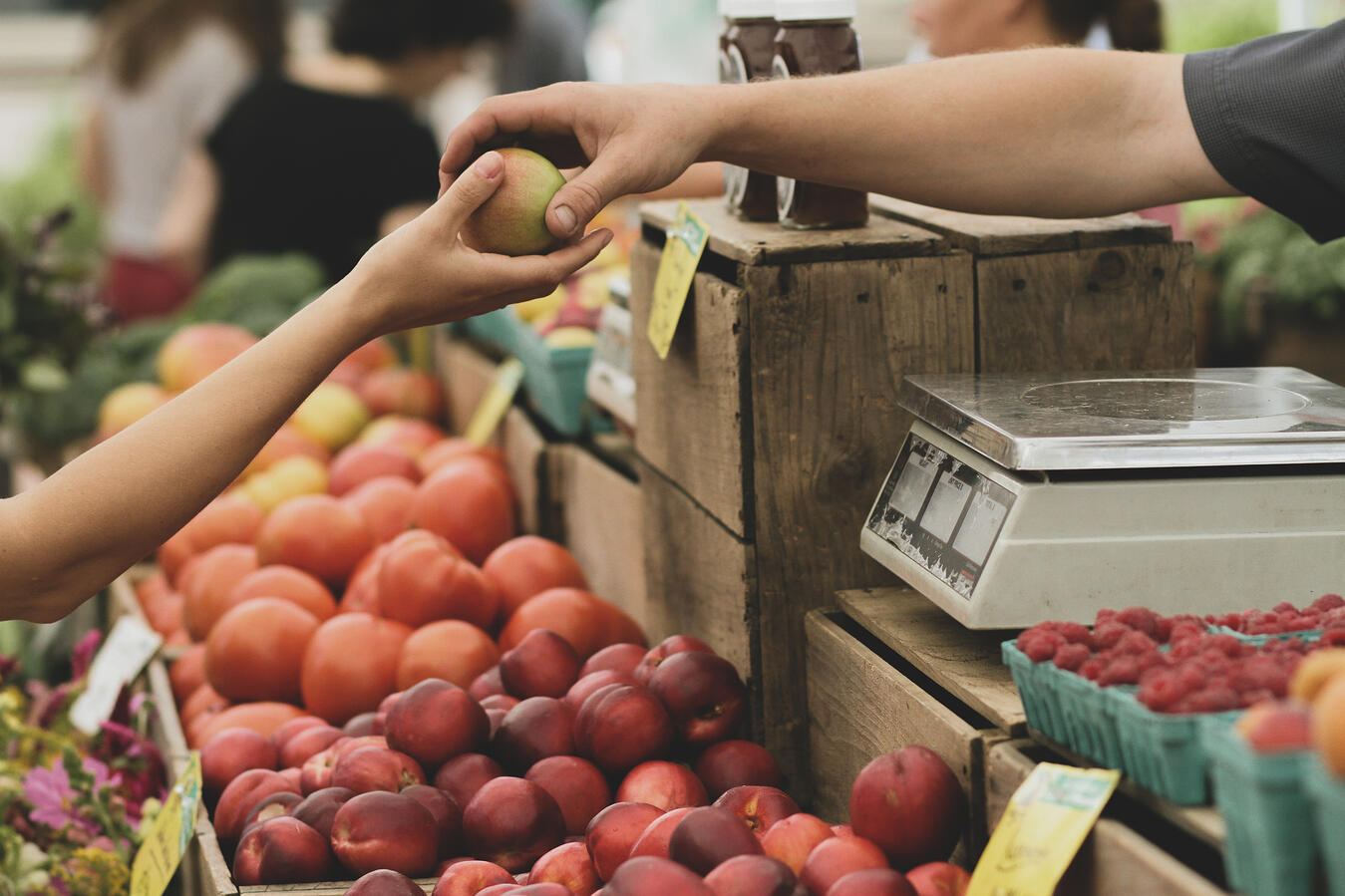 A picture of a customer being handed an apple at a farmers' market stand.