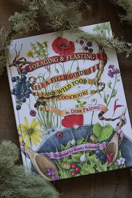 Foraging and Feasting by Dina Falconi book cover