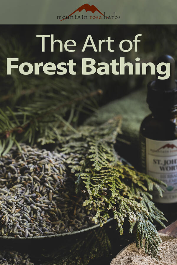 The Art of Forest Bathing Pinterest pin for Mountain Rose Herbs.