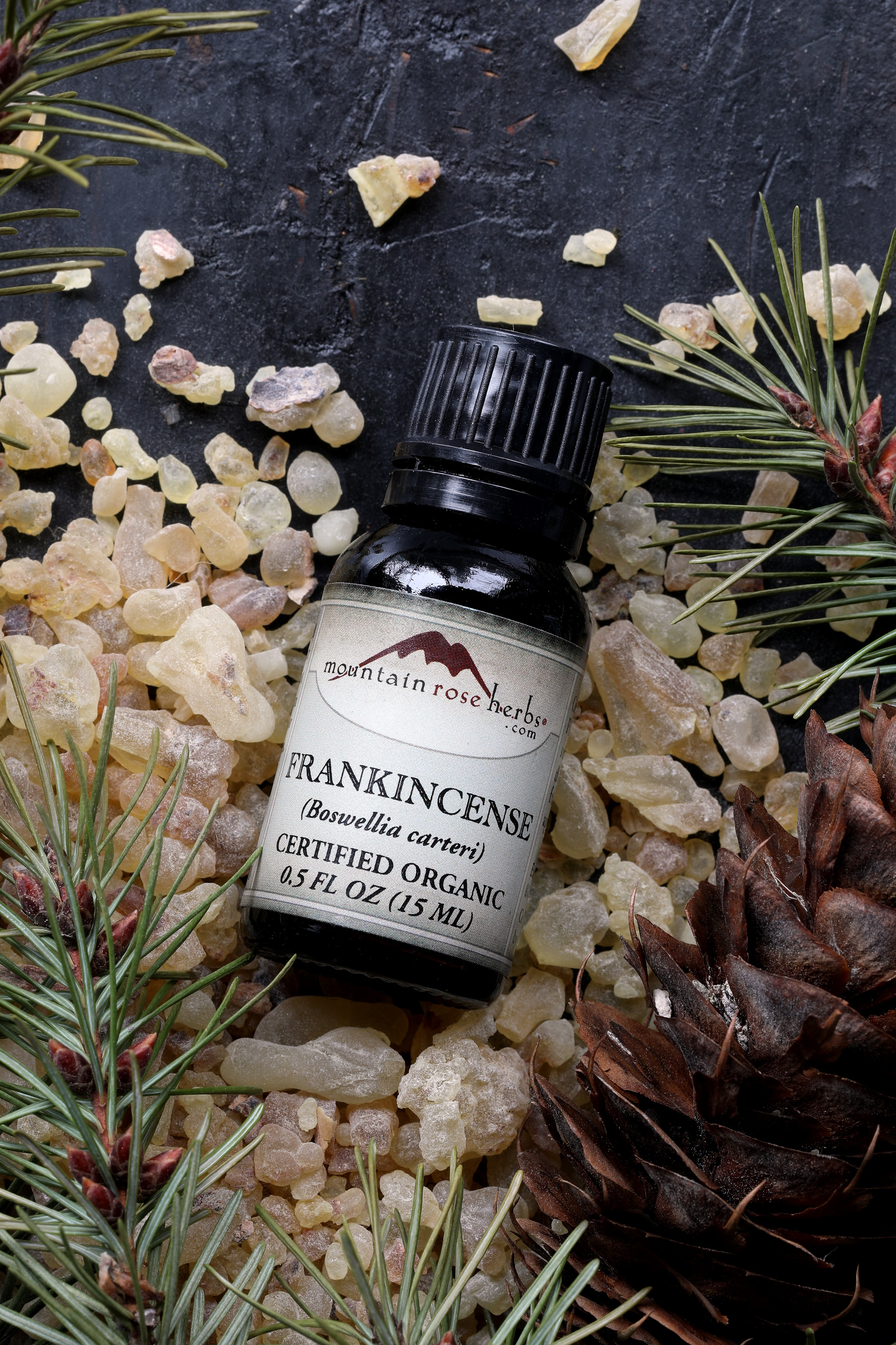 Mountain Rose Herbs Frankincense essential oil laying in a pile of frankincense resin and pinecone