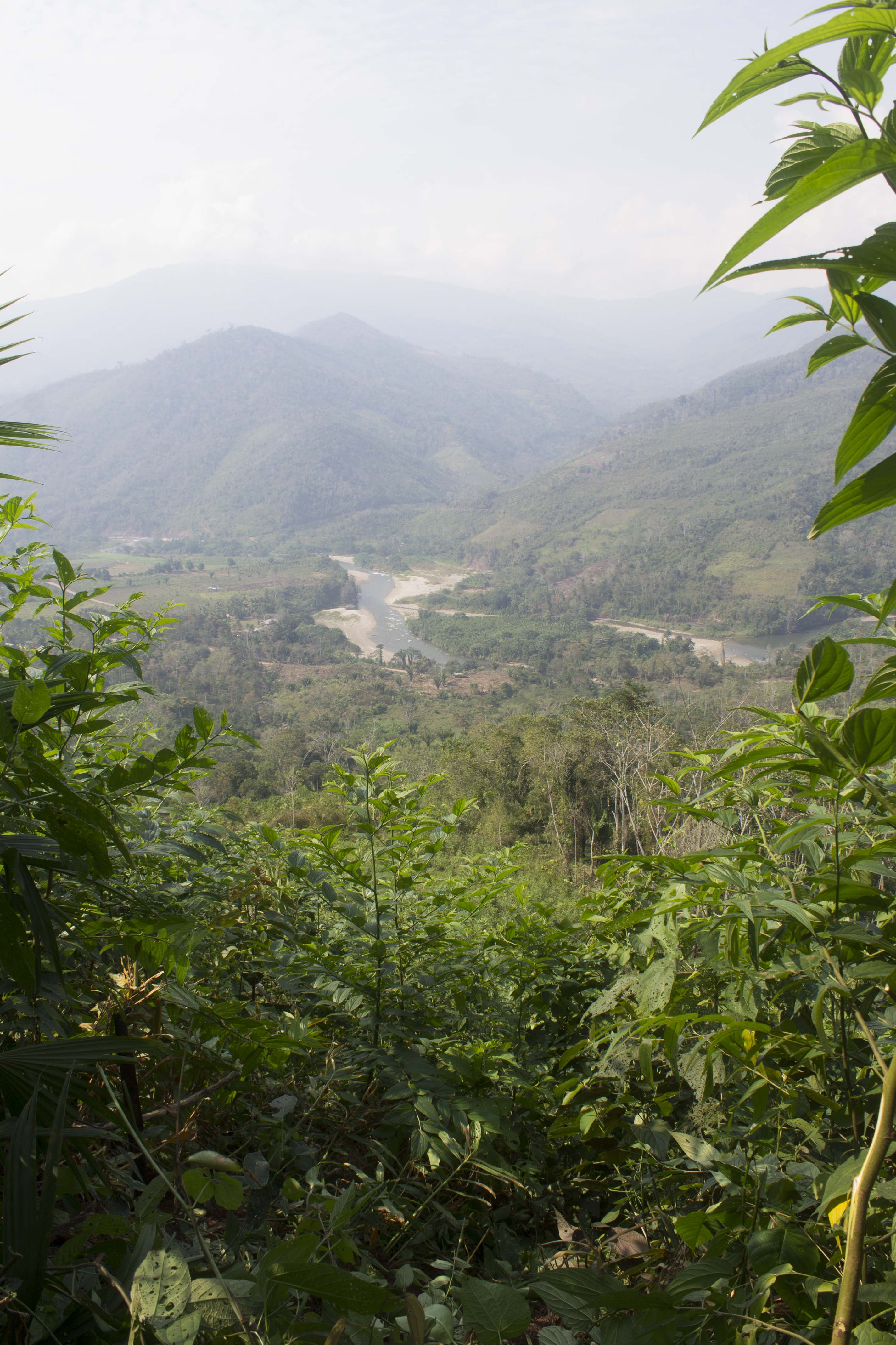 View of Peruvian mountains and valley from hillside of ginger farm