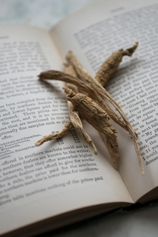 4 peices of forest grown ginseng sitting in the crease of an open book