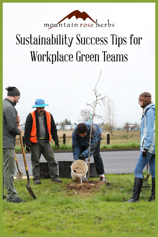 Pinterest link to Mountain Rose Herbs pin for Tips for Corporate Green Teams and how they can help your organization be more sustainable and profitable. Volunteers plant trees in early spring in Oregon.