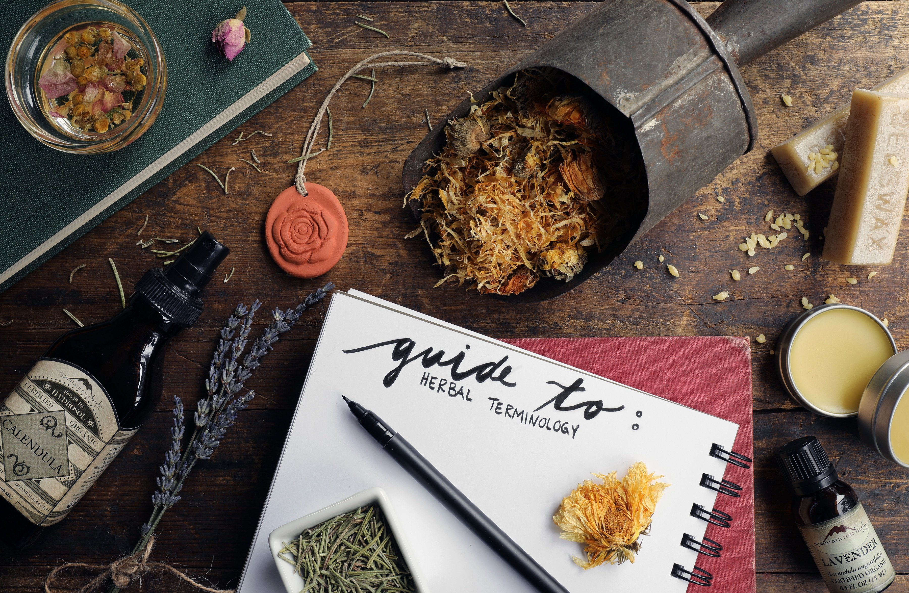 Notebook with pen and herbal intgredients and fresh herbs for learning herbal educatio