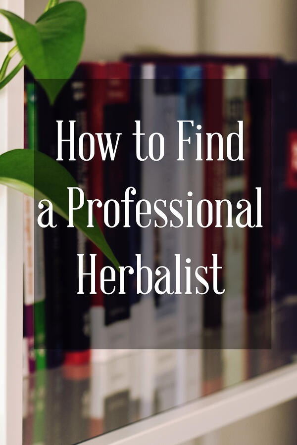 Pinterest link to Mountain Rose Herbs blog post How to Find a Professional Herbalist