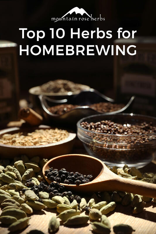Herbs for home beer brewing Pinterest pin from Mountain Rose Herbs.
