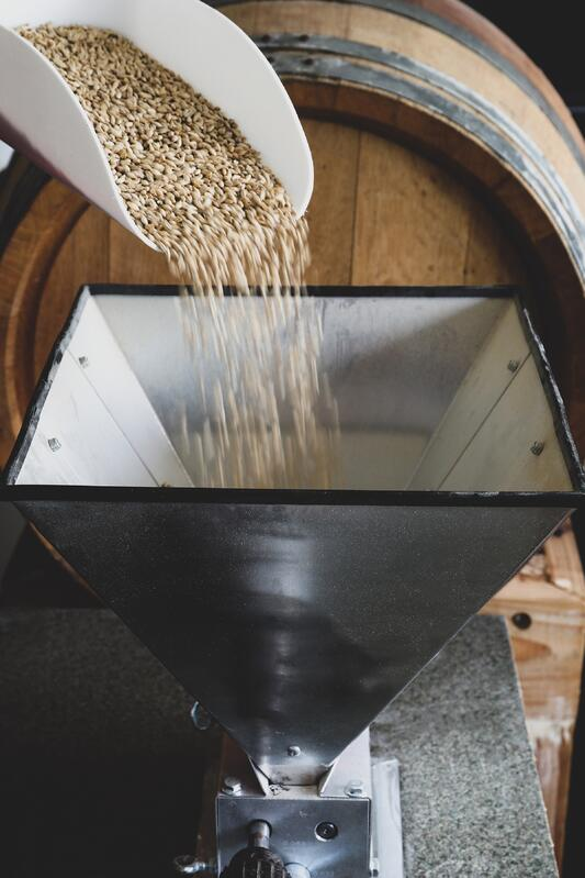 Scoop pouring grain into a a small grain mill for herbal beer making