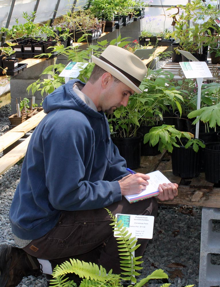 Farm Stories: Medicinal Herbs of Appalachia