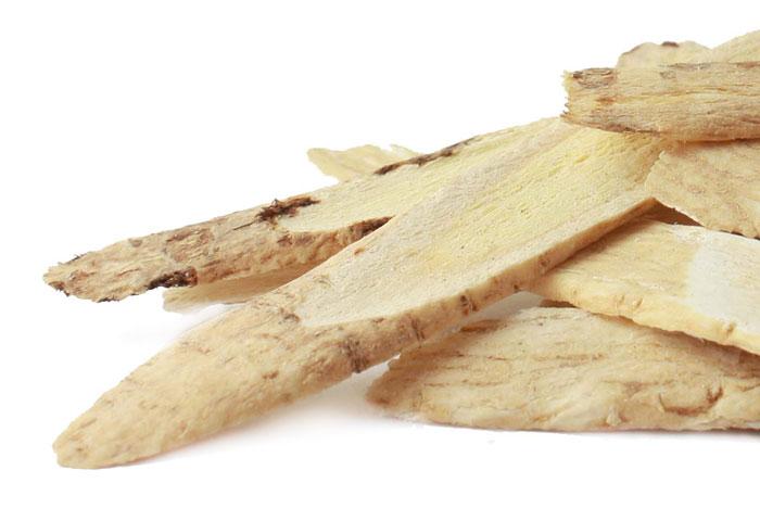 Astragalus-Root-blog