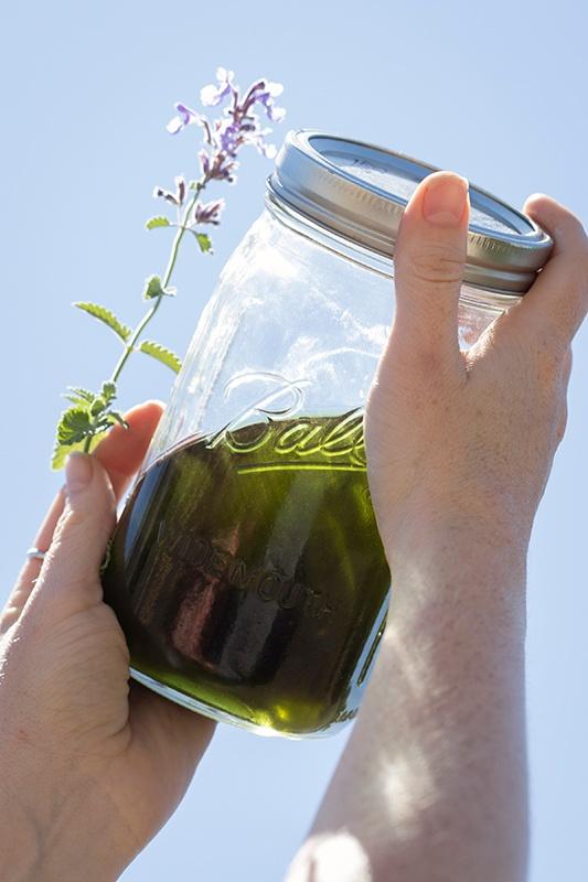 DIY: Herbal Repellent Recipes