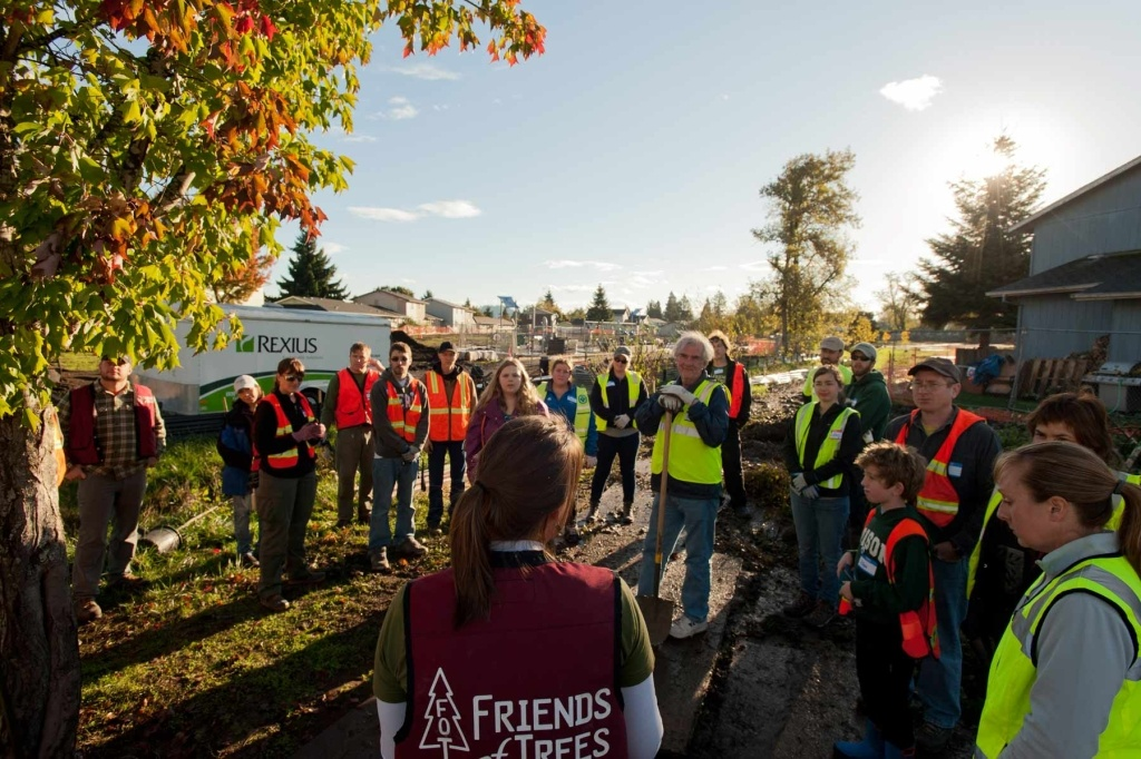 Eco-Projects: Tree Planting