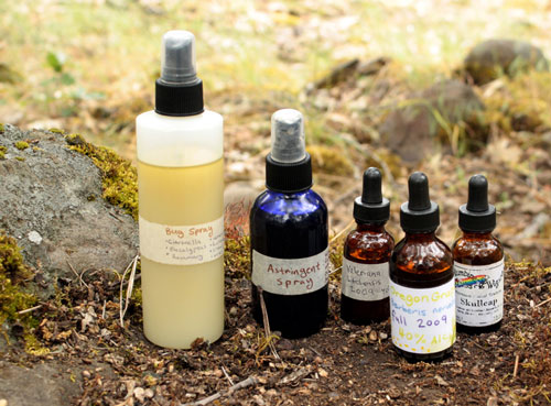 Adventures in Herbal Camping - Medicinal Formulas