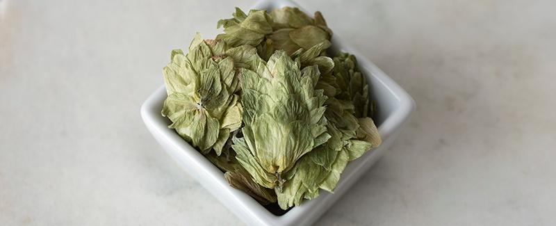 Fall Favorites: Organic Hops Flowers