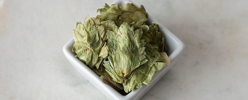 Fall Favorites: Organic Hops Flowers