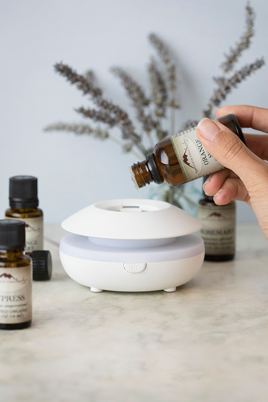 New in the Shop: Lily Electric Diffuser