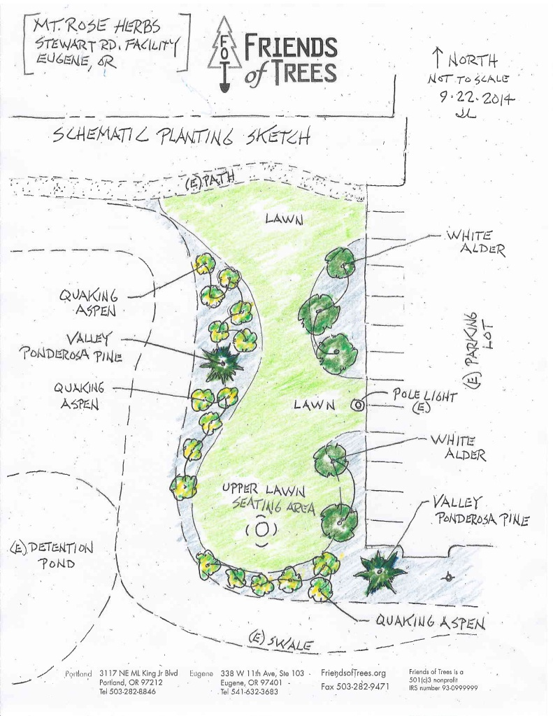 Mountain Rose Herbs Friends of Trees Schematic Planting Sketch