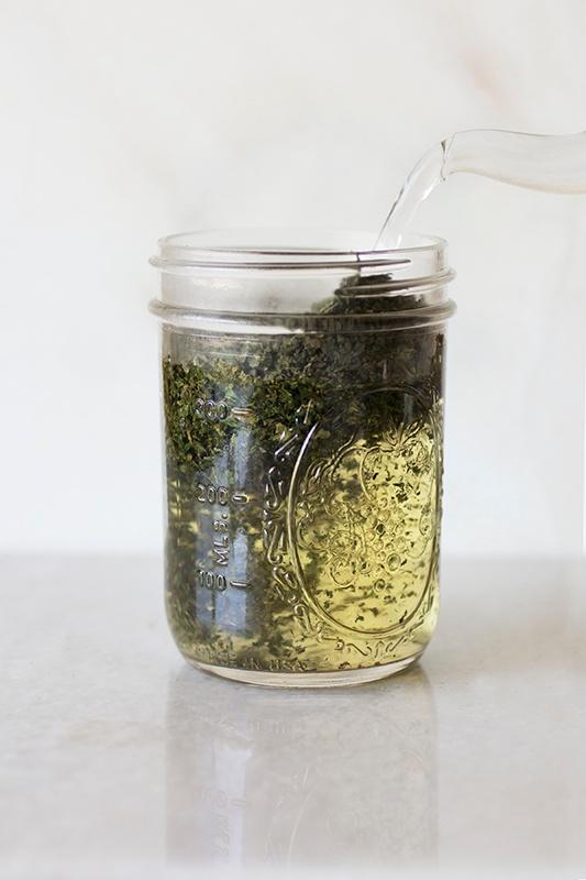 Spring Recipes: Stinging Nettle Harvest