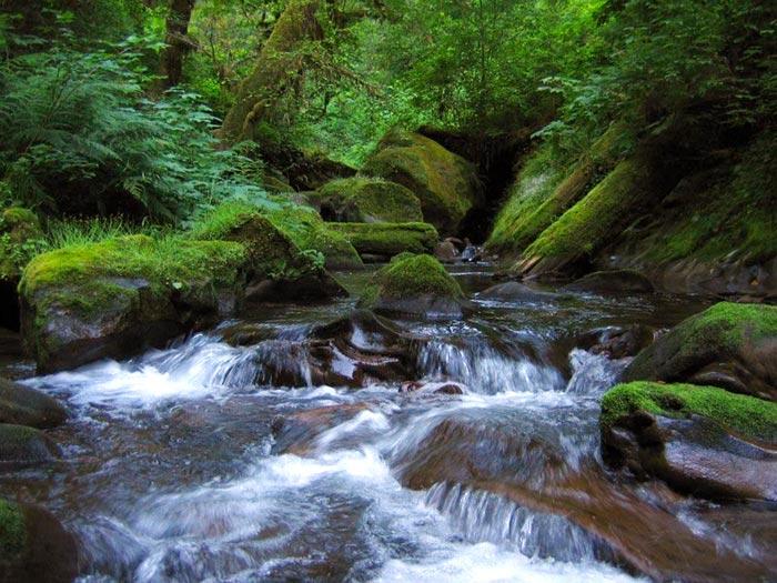 Oregon-Wild-OC-Lands