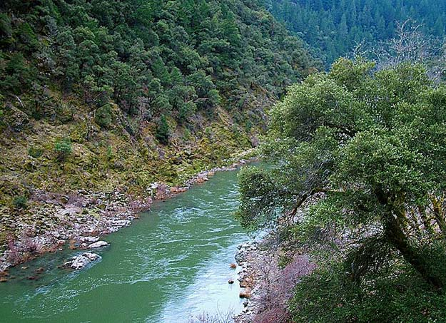 Pacific Rivers Council - Mountain Rose Herbs Guest Blog