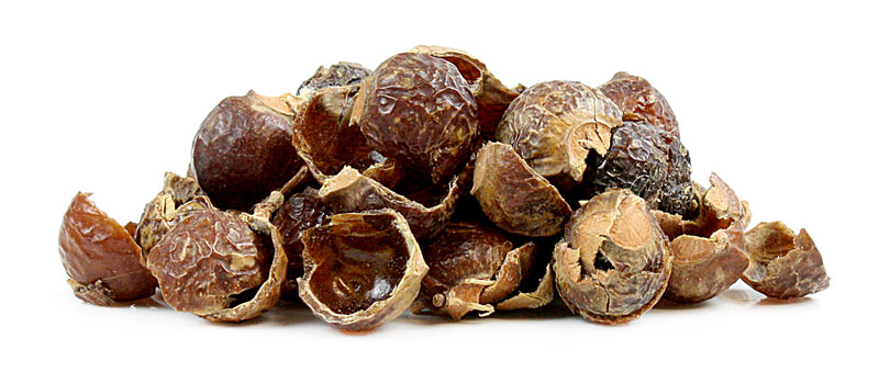 Pile of soapnuts