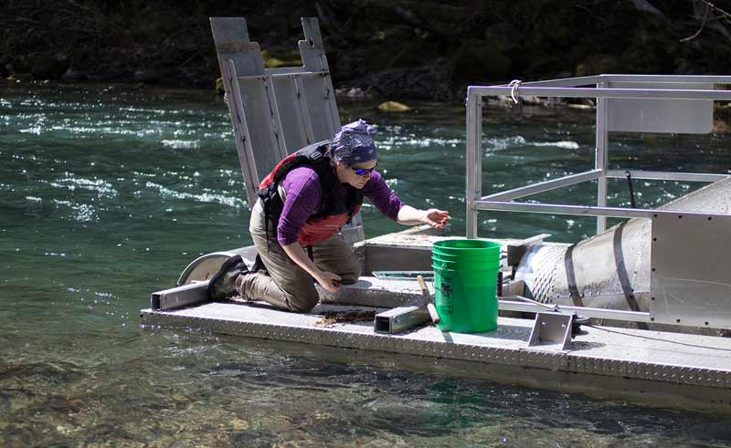 Meghan Horne-Brine, Fish Technician with the Oregon Department of Fish and Wildlife
