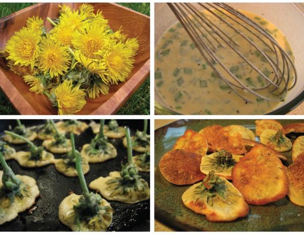 Dandelion Fritters Recipe