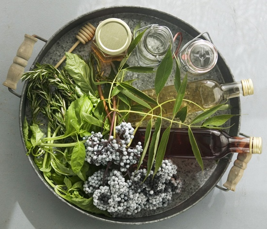Elderberry Vinegar Ingredients top viiew