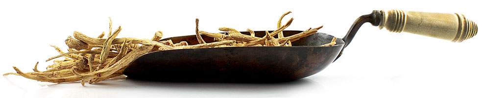 ginseng-in-scoopblog