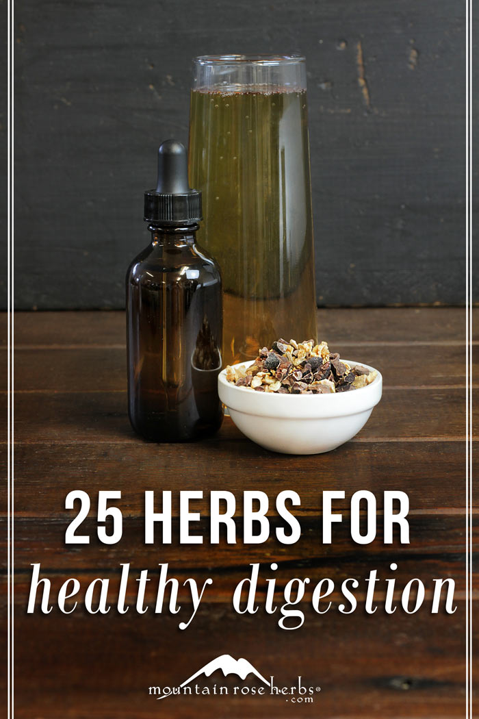 25 Herbs for Healthy Digestion: Bitters, Aromatics, Demulcent Recipes