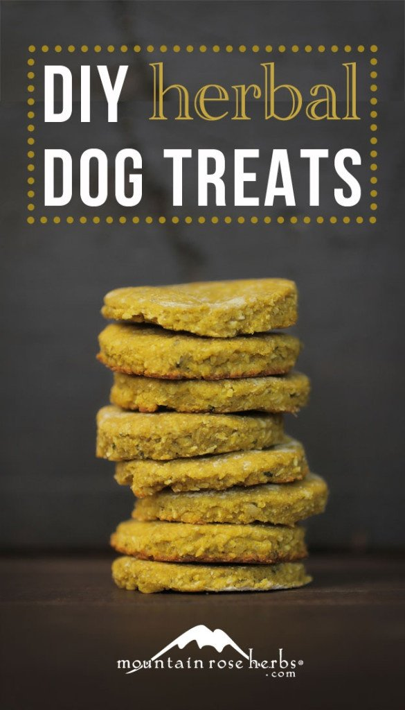 DIY Herbal Dog Treats