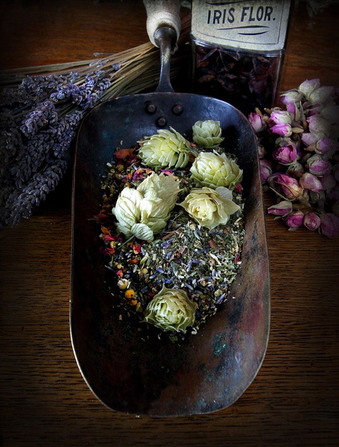 DIY Herbal Sleep and Dream Recipes