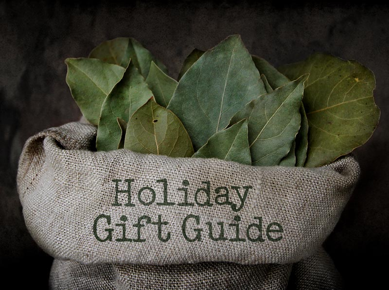 2013 Holiday Gift Guide!