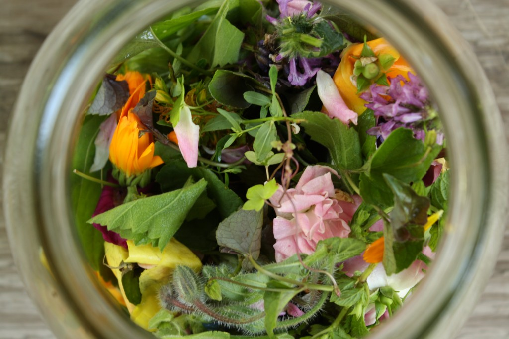 Medicine Making Basics: Herbal Infusions