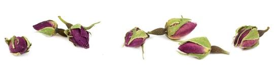 Organic Roses