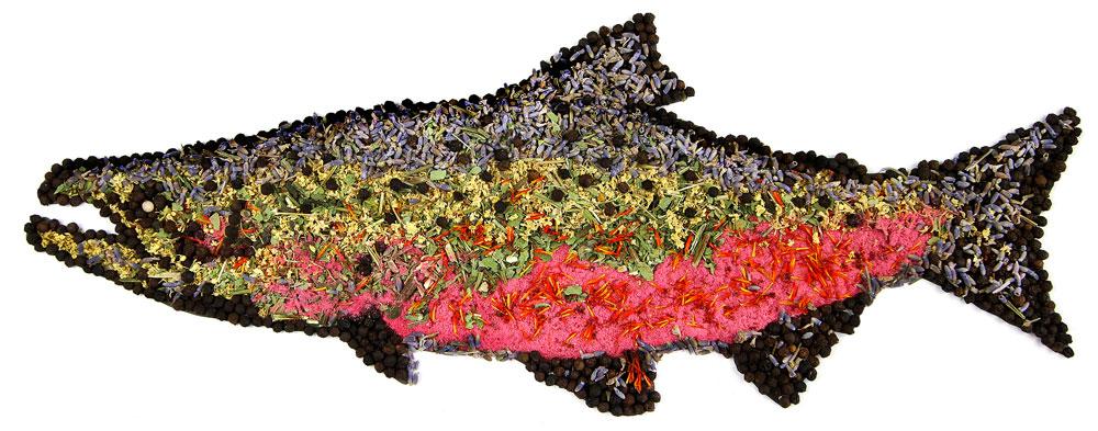 Mountain Rose Herbs Protects Wild Salmon!